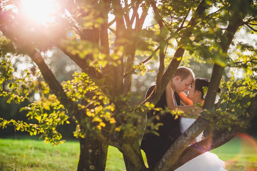 Im Golfclub Kosaido in Düsseldorf berührt die Stirn einer chinesische Braut die Stirn des deutschen Bräutigams Beide etwas versteckt hinter Ästen und bei tollem Licht mit Lans Flares