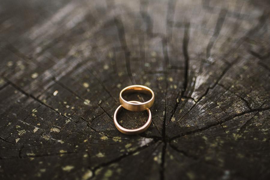Hochzeitsringe aus Gold auf Baumstamm