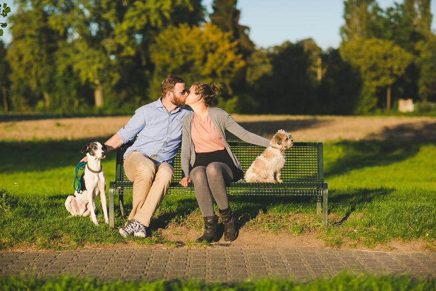 Paar küsst sich auf einer Bank daneben Hunde