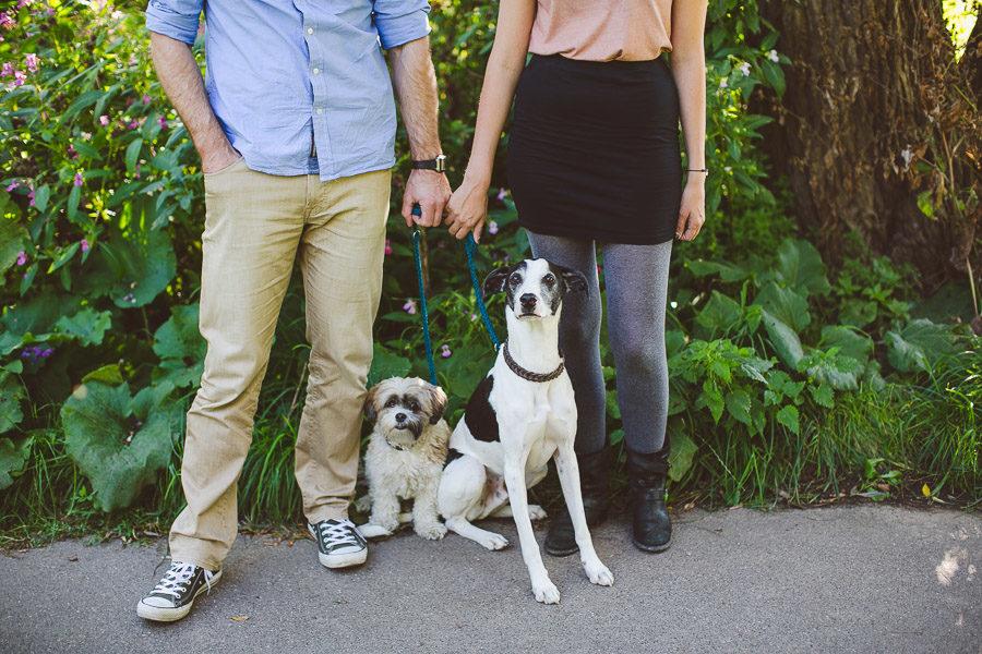 Paarshooting mit Hunden in Köln am Rhein