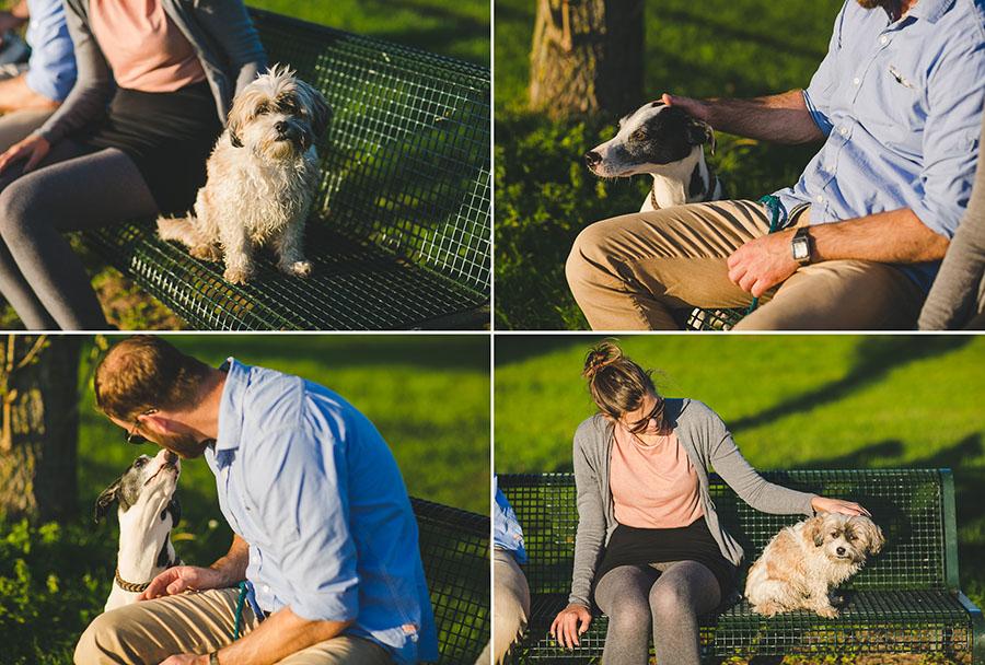 Paarfotos mit Hunden